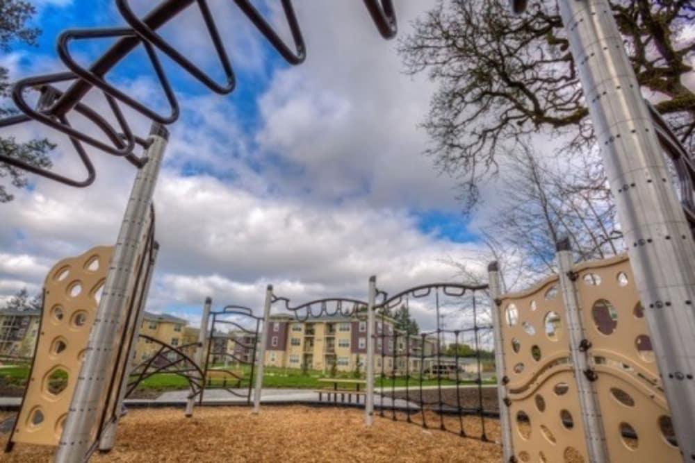 Playground at Terrene at the Grove