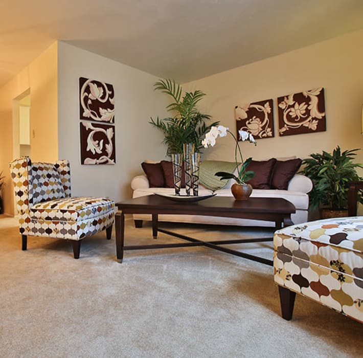 Living room layout at Willow Oaks Apartments in Bryan, Texas