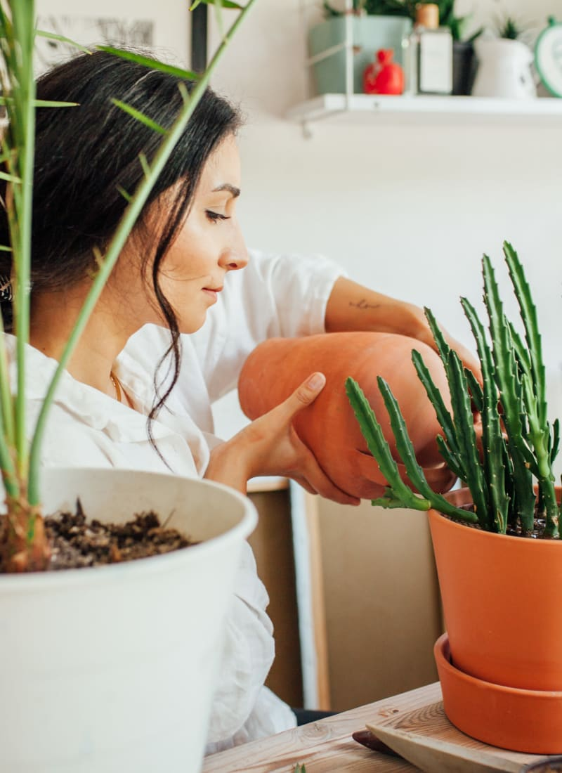Resident watering her indoor plants at Marquis at Silver Oaks in Grapevine, Texas