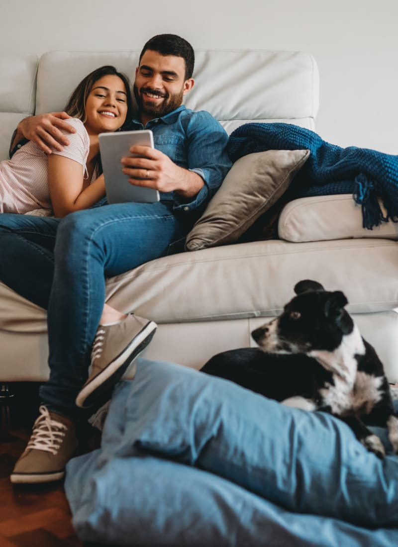 Two pets maximum per apartment at Marquis at Stone Oak in San Antonio, Texas