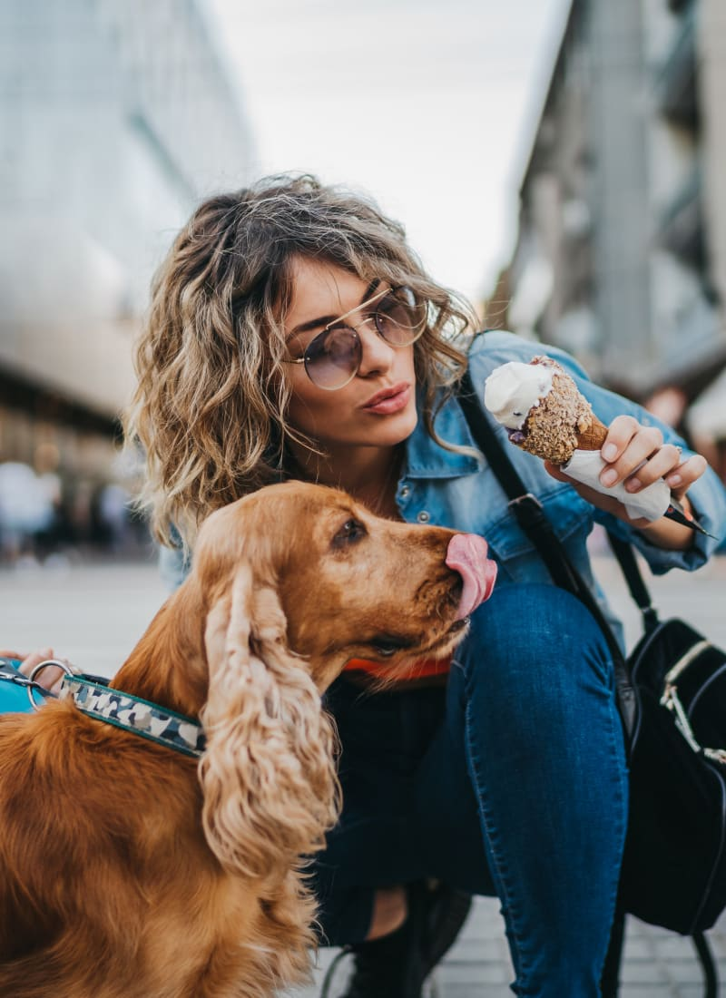 Breed restrictions at Austin Midtown in Austin, Texas