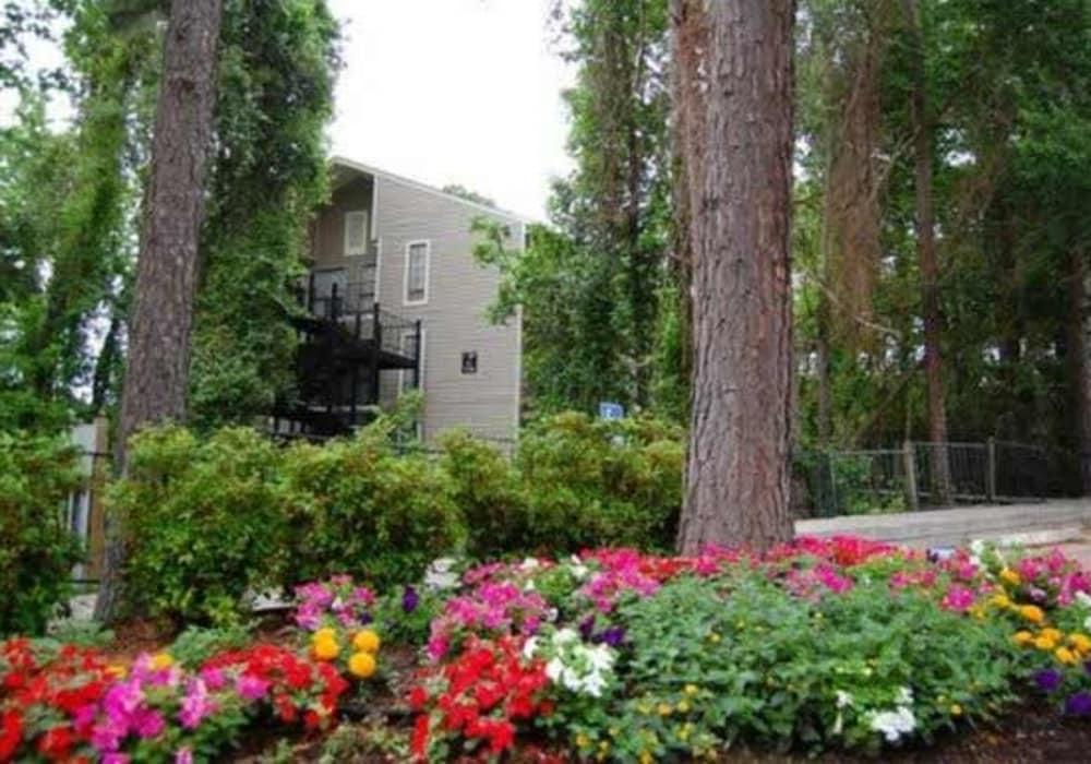 Flowerbed outside Cornerstone Apartments in Huntsville, Texas