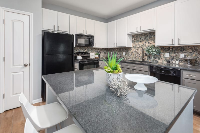 Kitchen with granite countertops at Luxe at 1820 in Tampa, Florida
