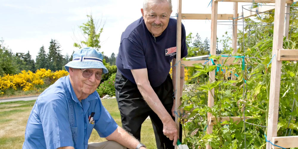 Residents tending to the garden at Patriots Landing in DuPont, Washington.