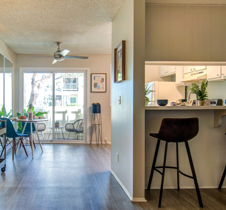 Cheap Apartments In California: Affordable Studio, 1 & 2 Bedroom Apartments In La Mesa, CA