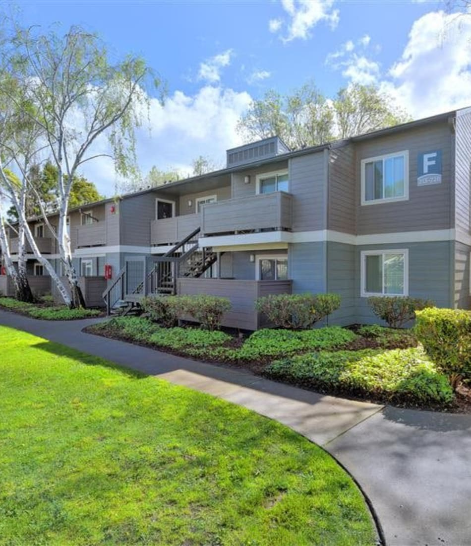 Professionally landscaped common areas outside resident buildings at Sofi Union City in Union City, California