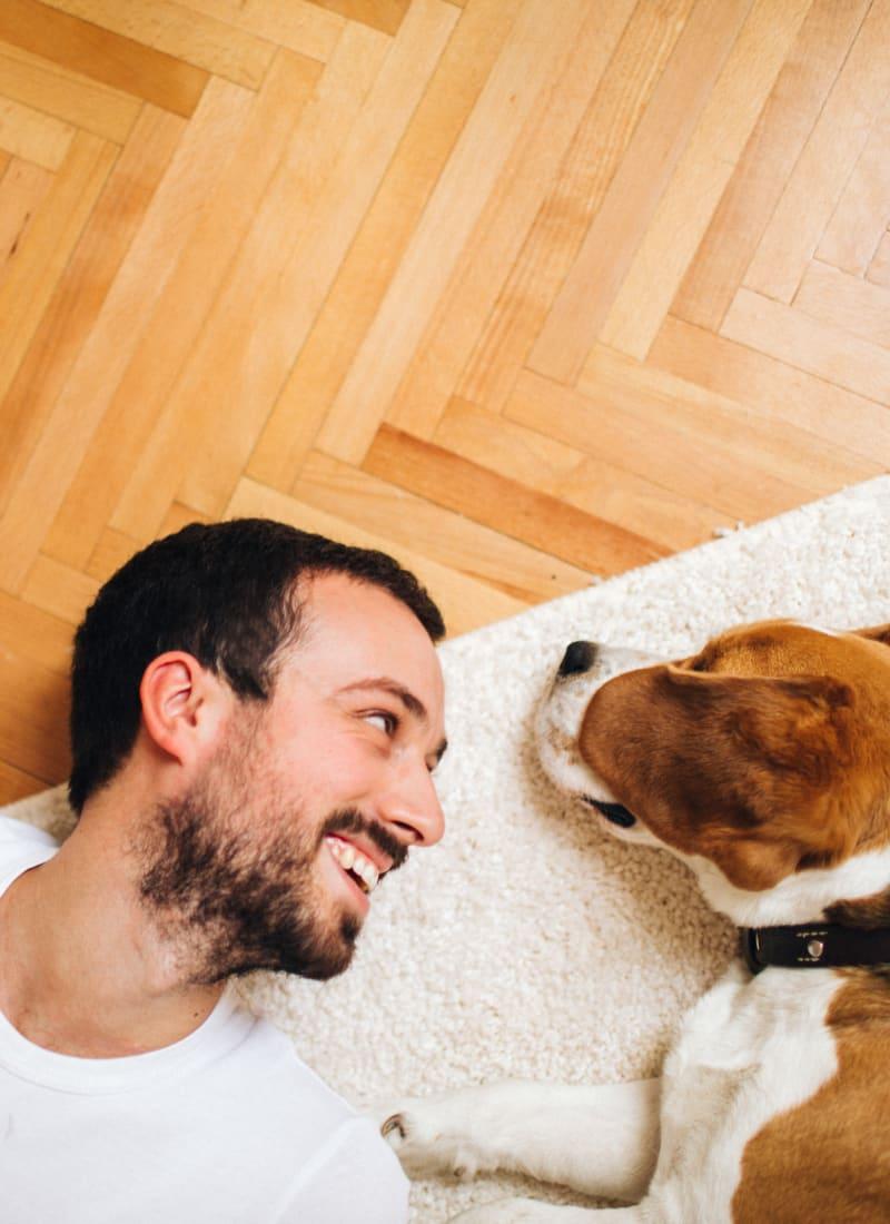 Two pets maximum per apartment at Marquis at Barton Trails in Austin, Texas
