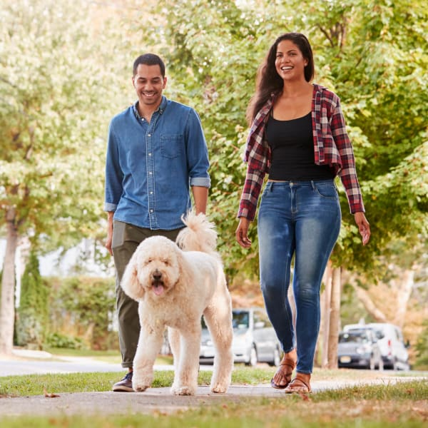 Resident couple and their dog taking a stroll through the neighborhood at Olympus Hillwood in Murfreesboro, Tennessee