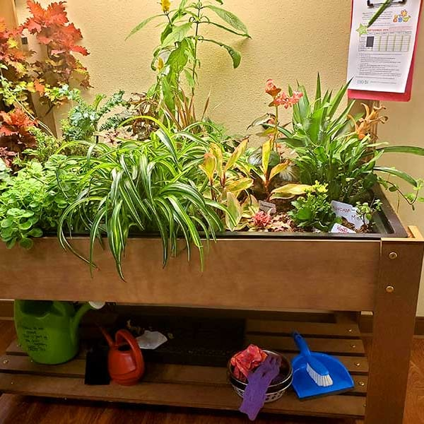 Indoor planter full of vibrant plant life at Quail Park of Lynnwood in Lynnwood, Washington