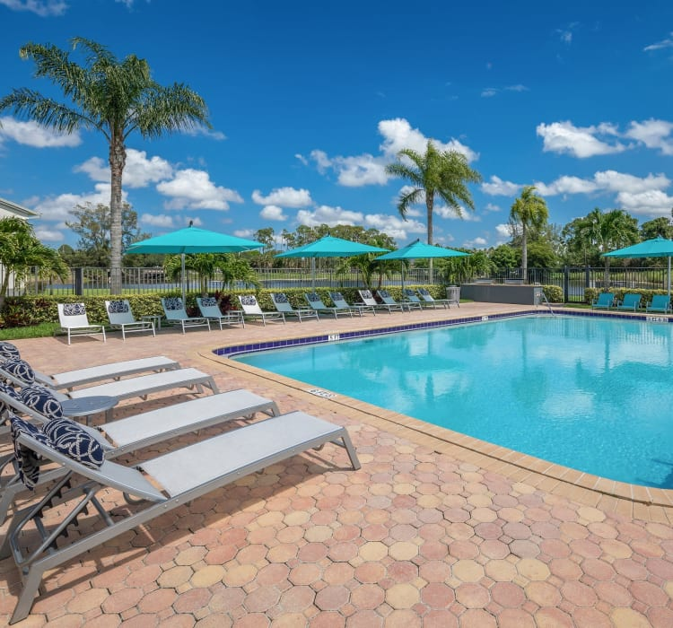 Picnic area with views of the lake at Verse at Royal Palm Beach in Royal Palm Beach, Florida