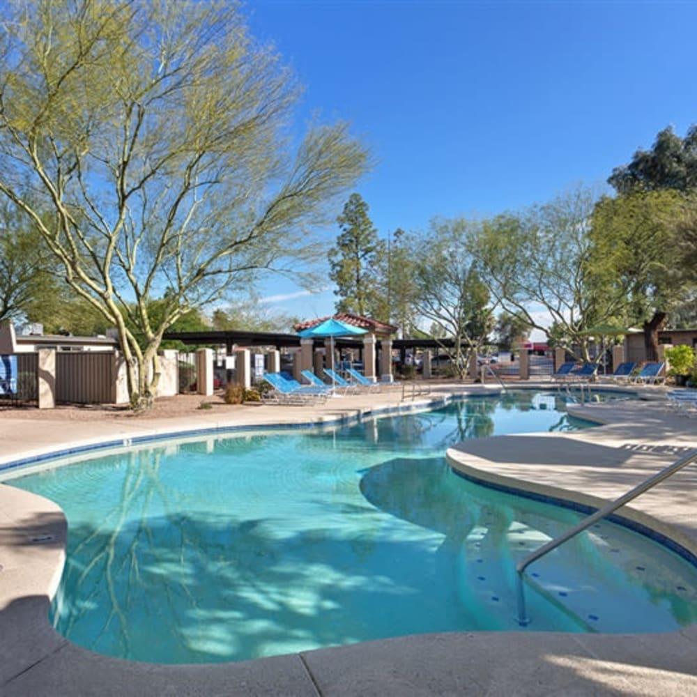 The large swimming pool surrounded by lush trees at 1408 Casitas at Palm Valley in Avondale, Arizona