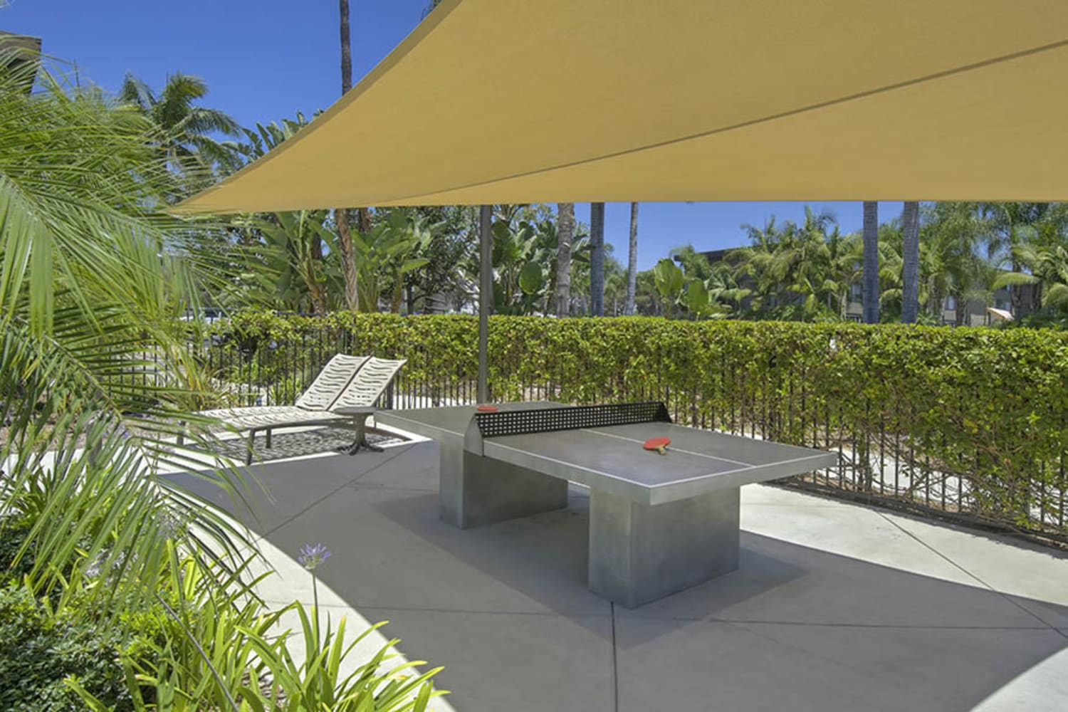 Outdoor table tennis table at UCA Apartment Homes in Fullerton, California