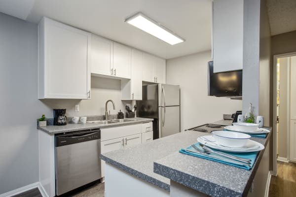 White Renovated Kitchen with Stainless Steel Appliances at Shadow Ridge Apartments in Oceanside