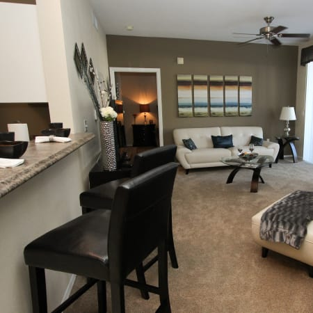 furnished living room at Palms at Wyndtree