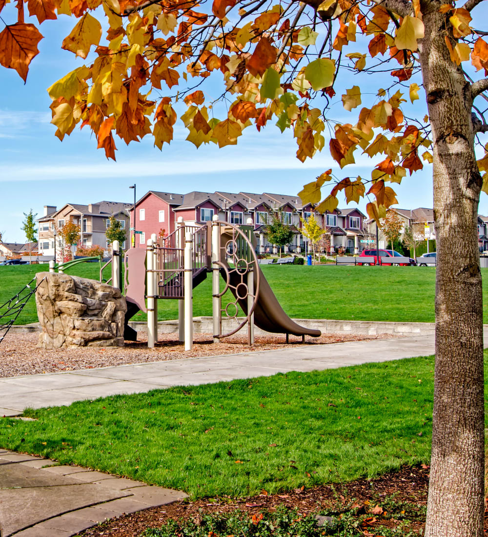 Swings and a play set at the onsite children's playground at Sofi at Cedar Mill in Portland, Oregon