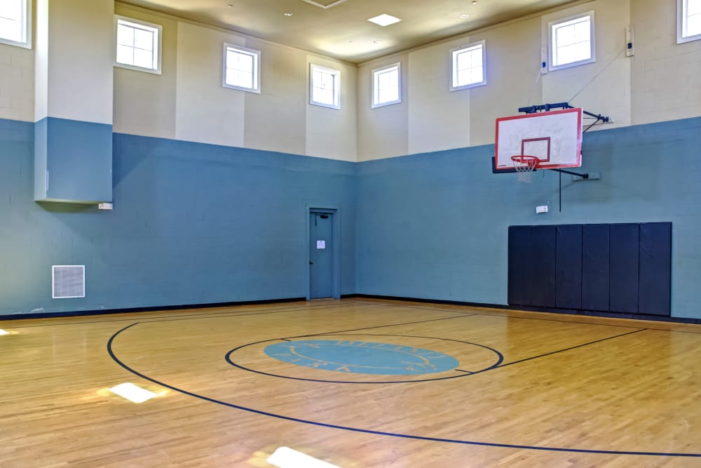 Basketball court at Provenza at Southwood in Tallahassee, Florida