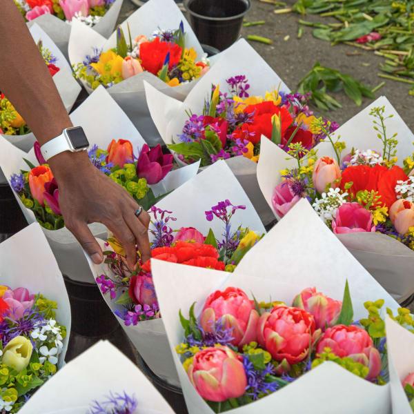 Beautiful fresh cut flowers in Burien, Washington near The Maverick