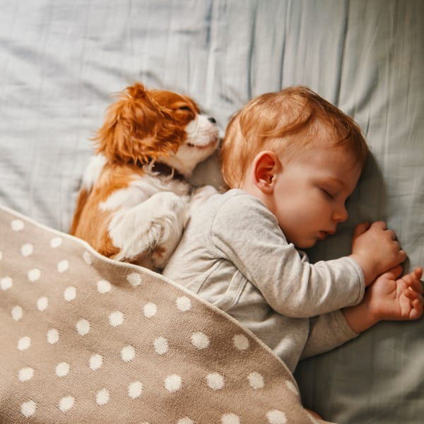 Puppy sleeping next to a baby at North Shore Apartment Homes in Slidell, Louisiana