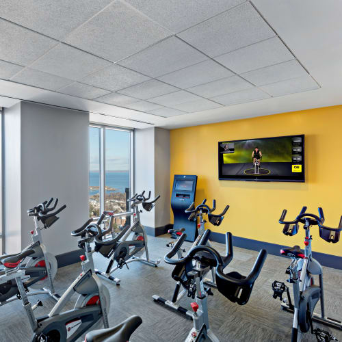View our amenities at Skyline New Rochelle in New Rochelle, New York