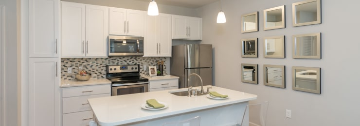 Silver Collection at Carl D. Silver Parkway in Fredericksburg, Virginia kitchen layout