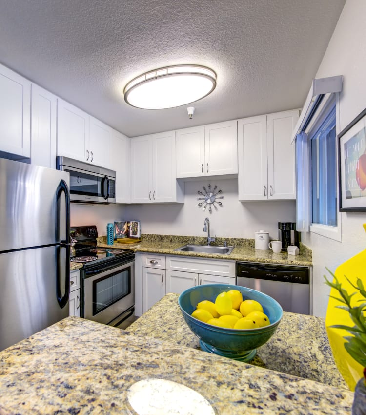 Modern kitchen with stainless-steel appliances and granite countertops in a model home at Sofi Sunnyvale in Sunnyvale, California