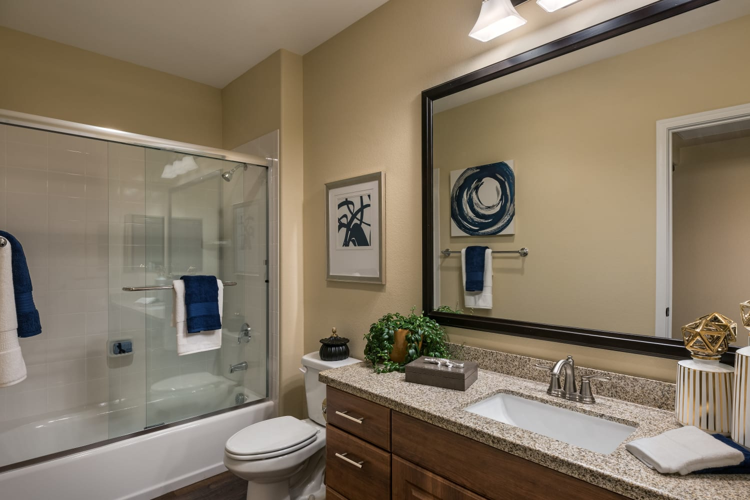 Two Bedroom Bathroom San Valencia in Chandler, Arizona