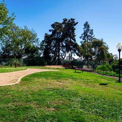 Onsite bark park at Veranda La Mesa in La Mesa, California