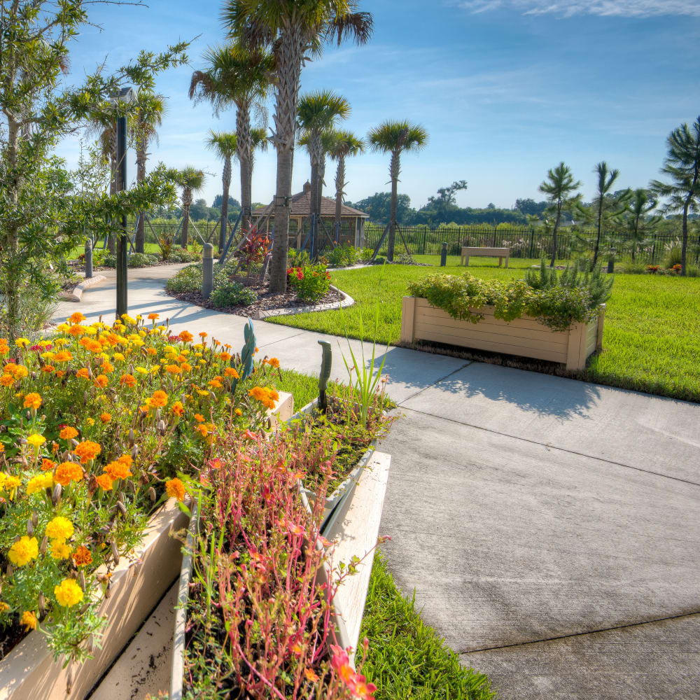 View our services and amenities at Inspired Living Hidden Lakes in Bradenton, Florida