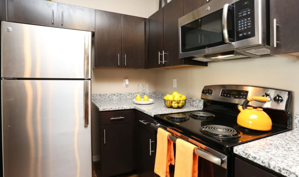 stainless steel appliances at Springs at Hurstbourne in Louisville, KY