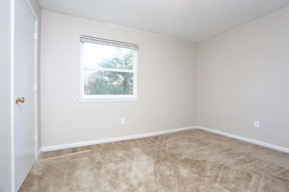 Large bedroom with plush carpeting at Laurel Pines Apartments in Richmond, Virginia