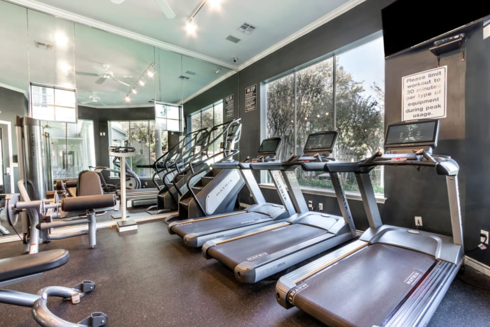 Cardio machines with large windows at Marquis at Stonegate in Fort Worth, Texas
