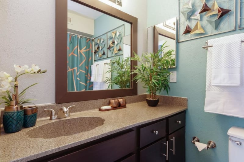 Spacious main bathroom at Circle at Point Park in Houston, Texas