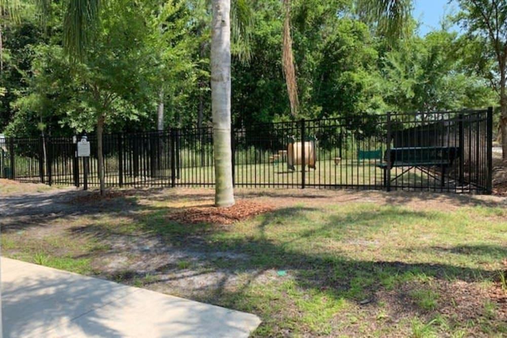 Dog park at Spyglass