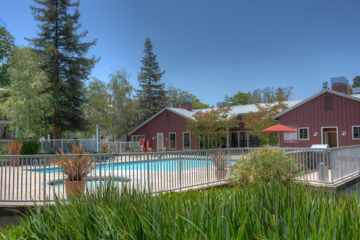 Secluded swimming pool at Cotton Wood Apartments in Dublin, California
