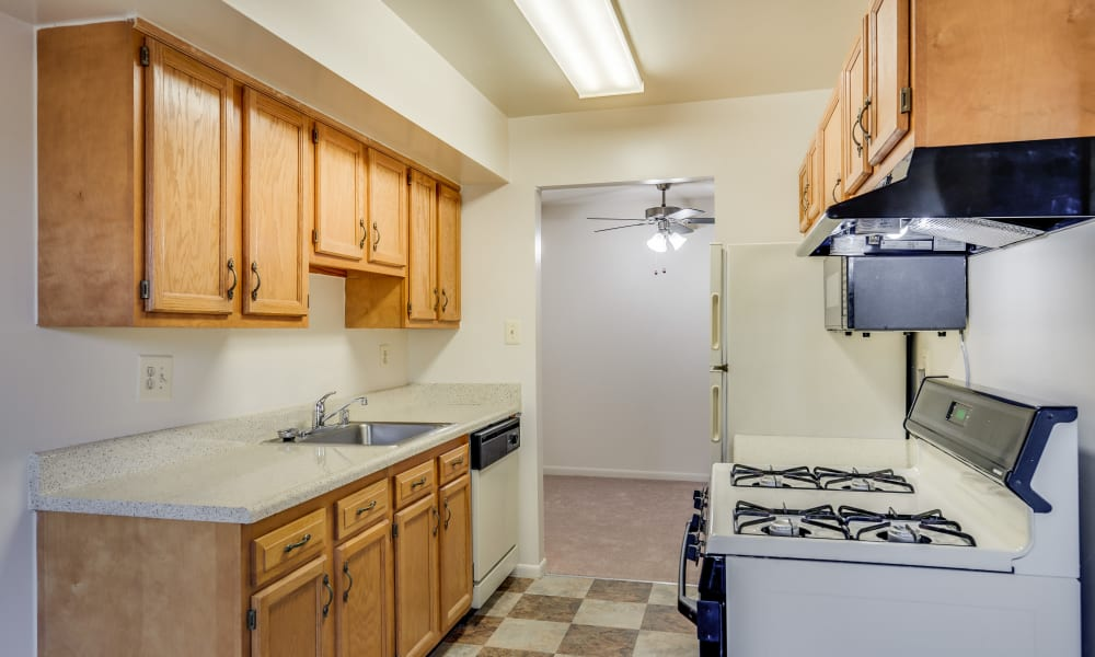 Kitchen layout at Shady Grove Apartments in Derwood, Maryland