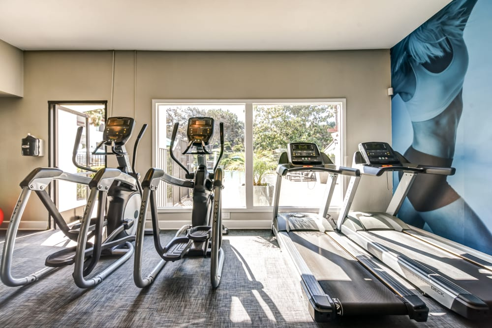Avana La Jolla Apartments in San Diego, California offers a fitness center