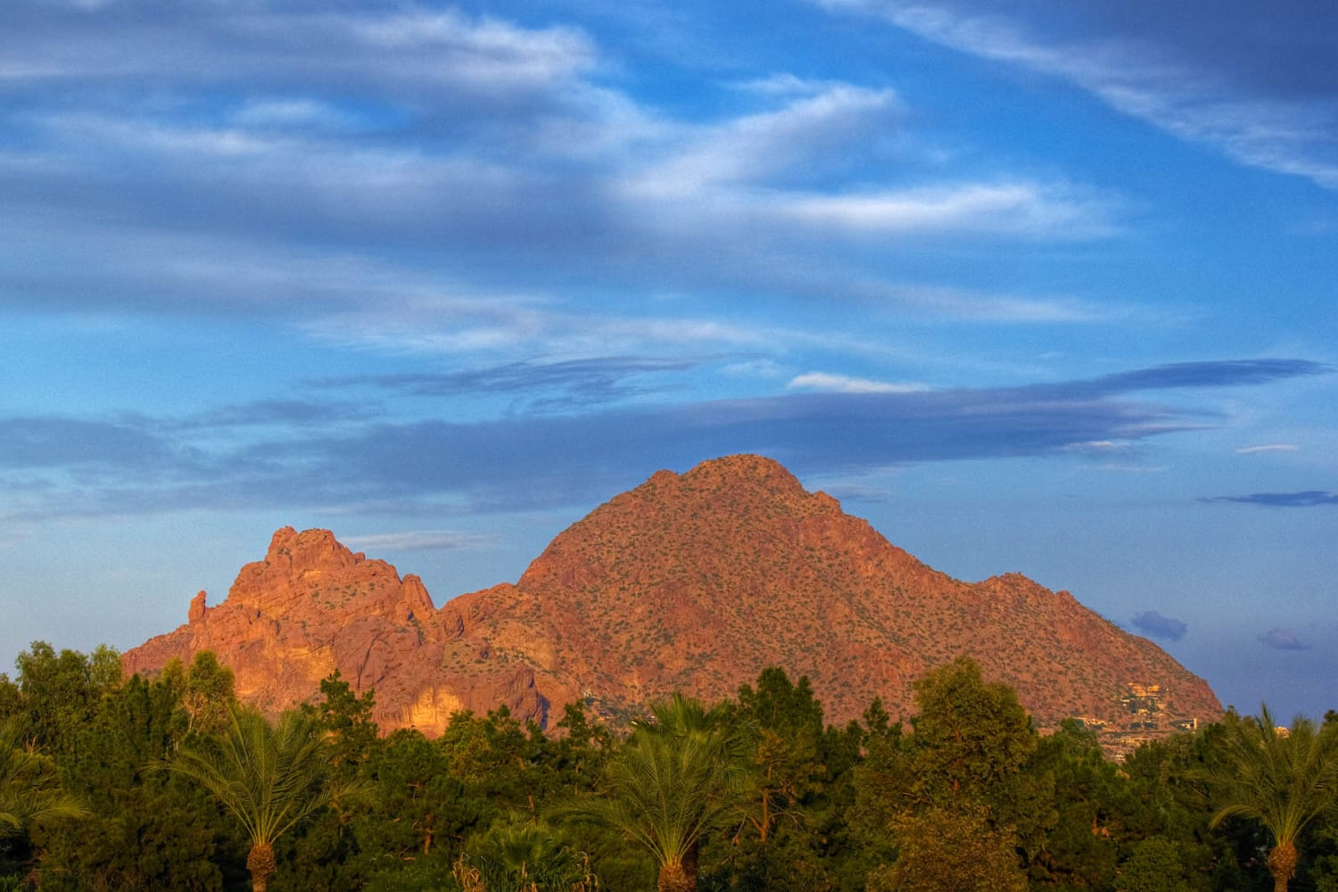 Enjoy the scenery at Cabrillo Apartments in Scottsdale, Arizona