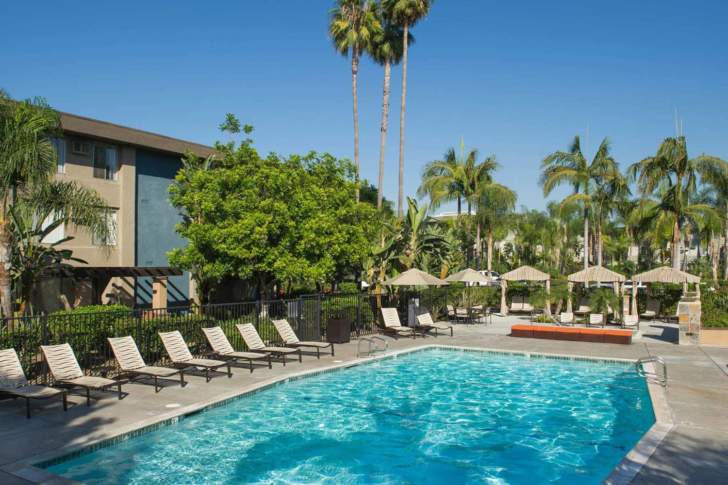 Enjoy apartments with a swimming pool at UCA Apartment Homes in Fullerton, California