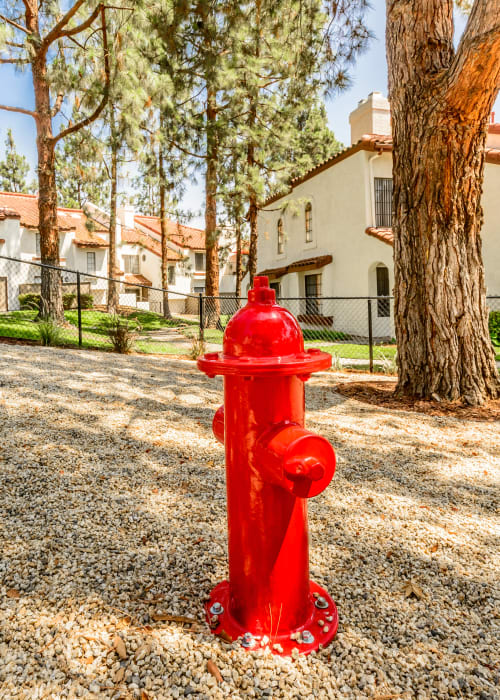 Onsite dog park with a fire hydrant at Sonora at Alta Loma in Alta Loma, California