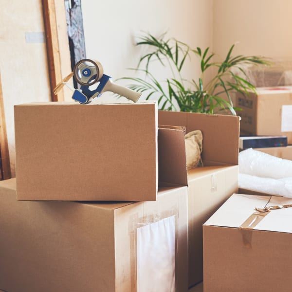 Freshly-packed boxes at a home near Missouri Flat Storage Depot in Placerville, California