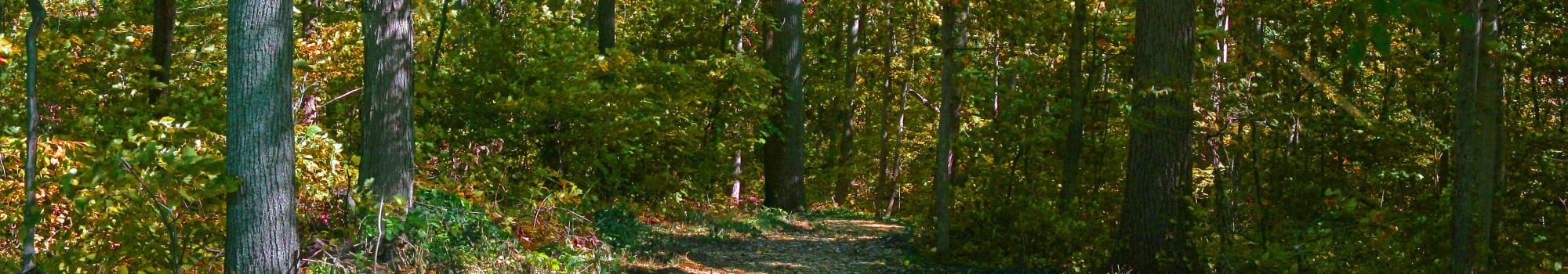 Join the Beztak team at Muirwood in Farmington Hills, Michigan