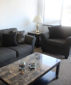 Sunlit Living Room at Campus Edge at Brigham