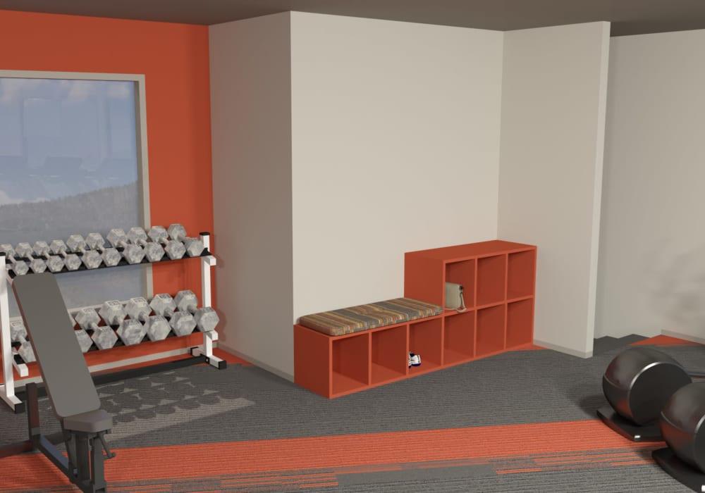 Rendered fitness center at Elevation Apartments, Tucson, Arizona