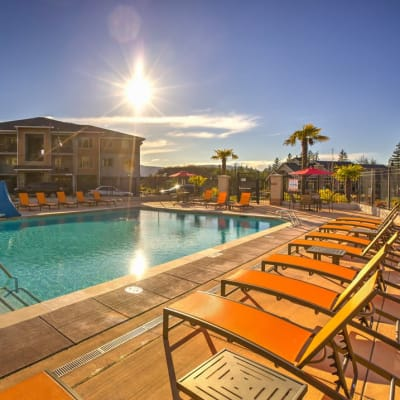 Luxurious swimming pool with lounge chairs at Vue Issaquah in Issaquah, Washington