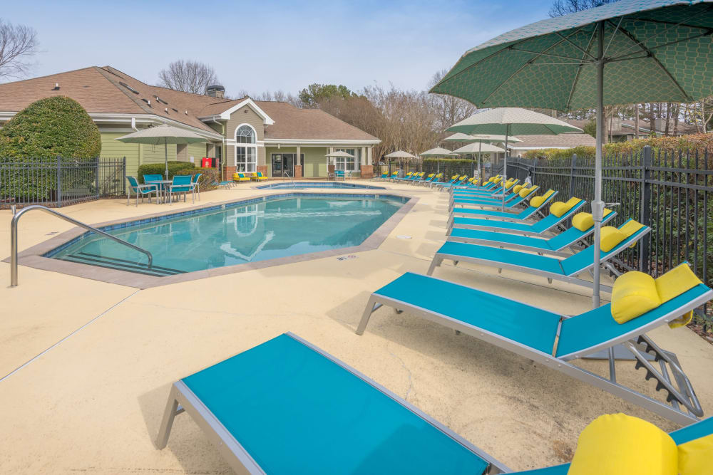 Row of lounges for you and friends to layout on a gorgeous day by the pool at The Madison in Charlotte, North Carolina