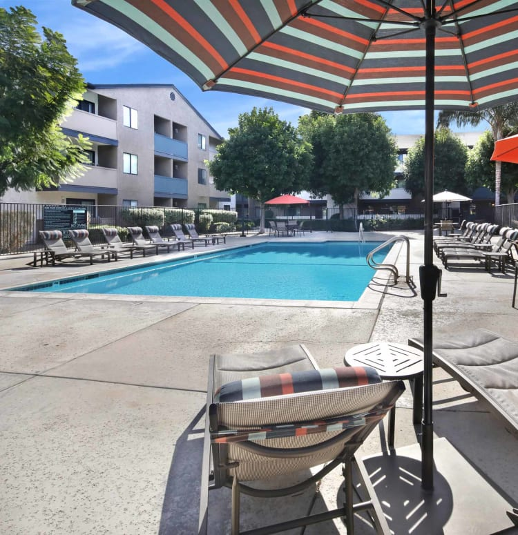 Chaise lounge chairs around the swimming pool at Haven Warner Center in Canoga Park, California