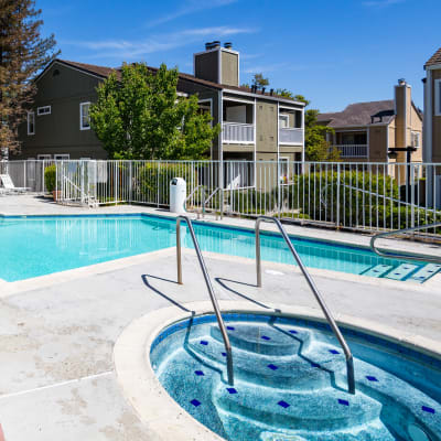 Community swimming pool with a spa at Haven Martinez in Martinez, California