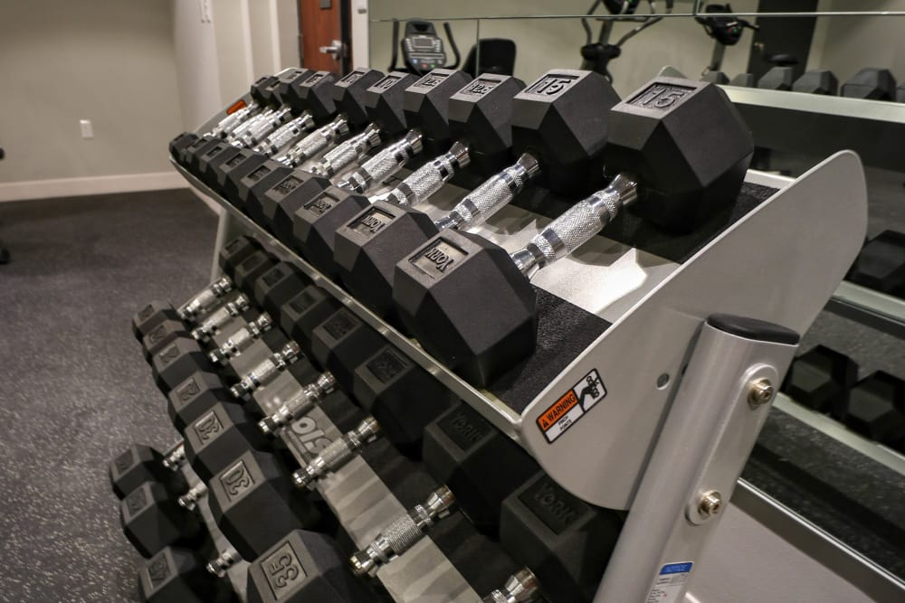 Free Weights in Fitness Center at Creekview Court Apartments in Getzville, NY