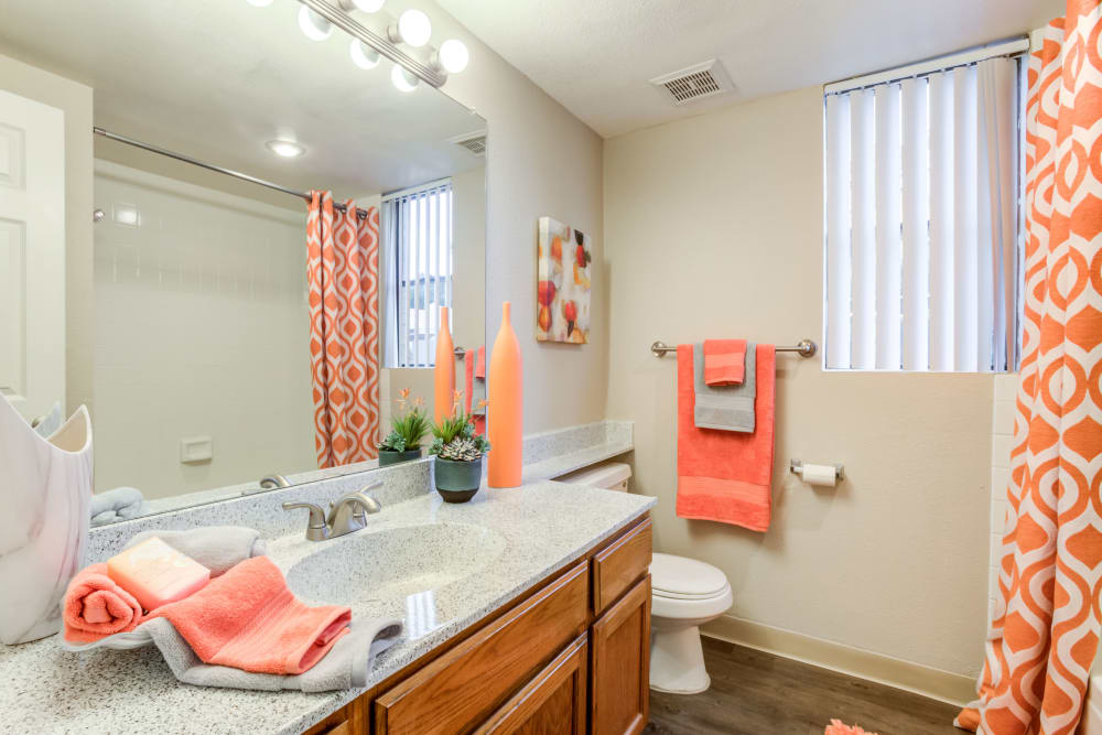 Our luxury apartments in Phoenix, Arizona showcase a bathroom