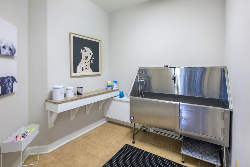 Dog wash station at The Vive in Kannapolis, North Carolina